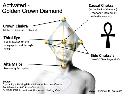 2-Golden-Crown-Diamond-Activated-DNA